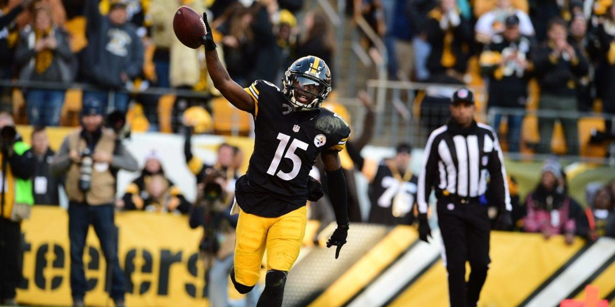 Steelers Wide Receiver Demarcus Ayers
