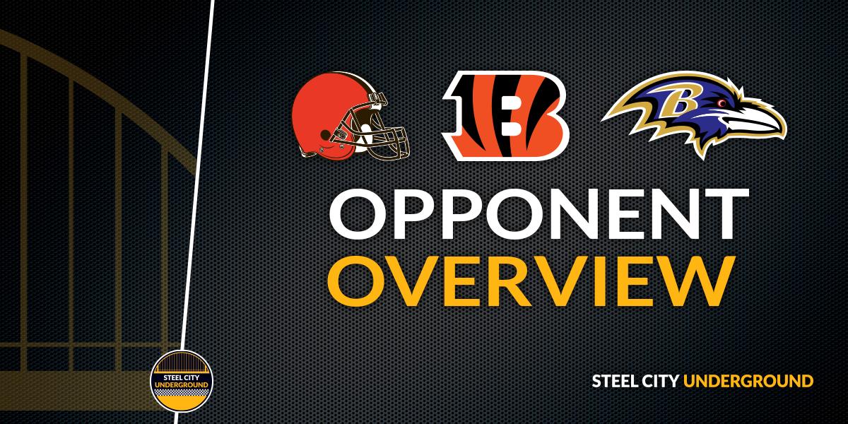 AFC North opponents: Cleveland Browns, Cincinnati Bengals, Baltimore Ravens