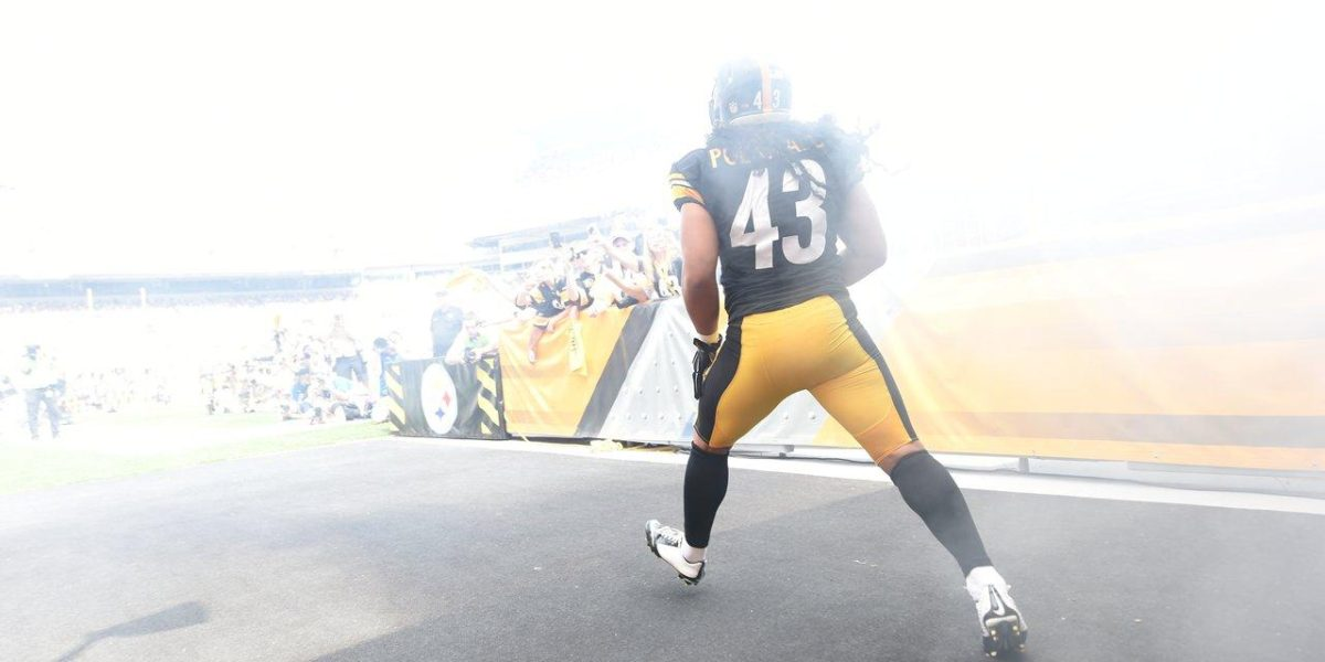Pittsburgh Steelers safety Troy Polamalu