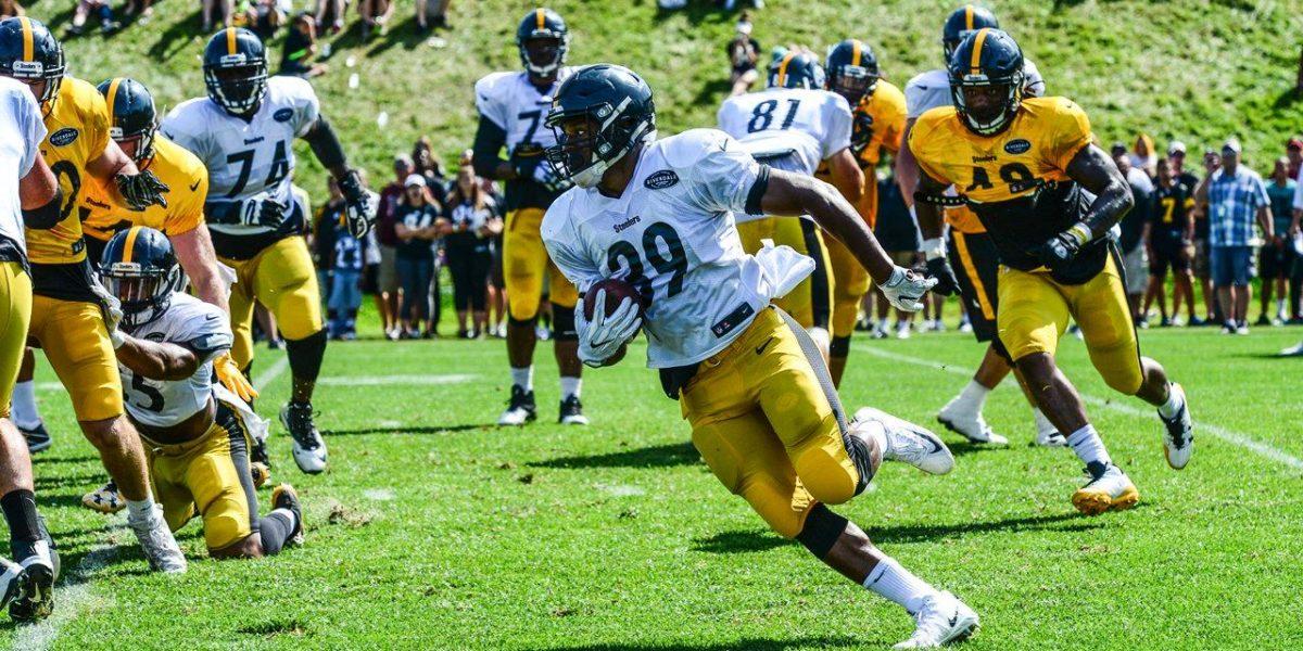 Pittsburgh Steelers running back Terrell Watson
