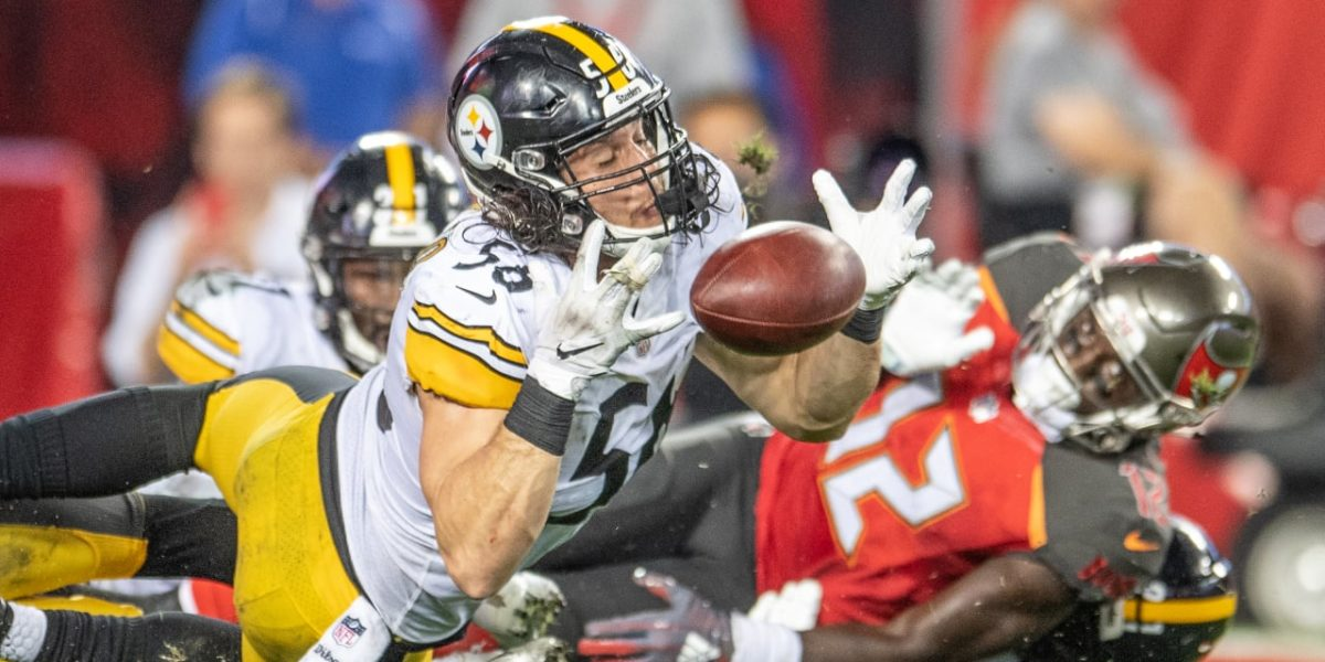 Pittsburgh Steelers LB Anthony Chickillo