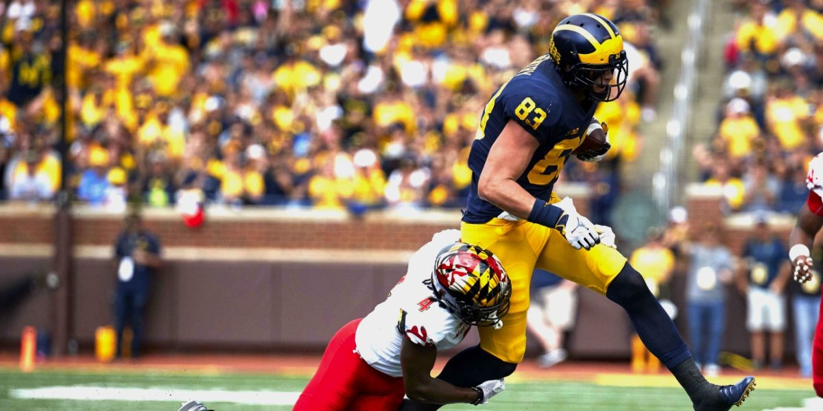 Michigan Wolverines tight end Zach Gentry makes a contested catch