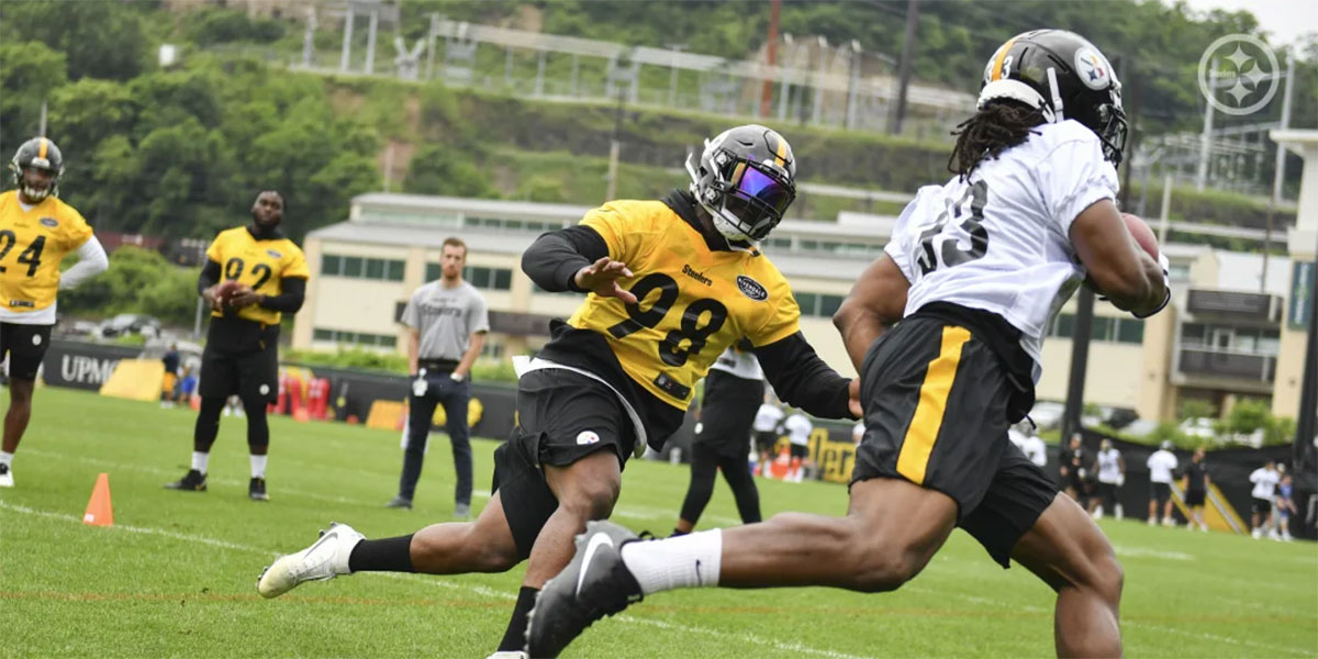 Pittsburgh Steelers LB Vince Williams during OTAs