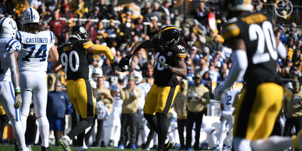 Pittsburgh Steelers LB TJ Watt and Bud Dupree