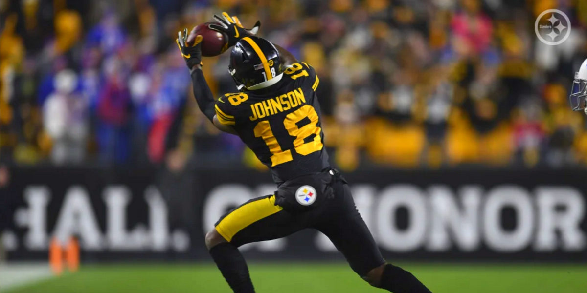 Pittsburgh Steelers rookie wide receiver Diontae Johnson makes a catch at Heinz Field during the 2019-20 NFL regular season