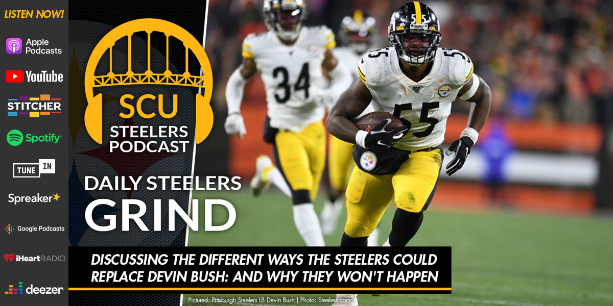 Discussing the different ways the Steelers could replace Devin Bush: and why they won't happen