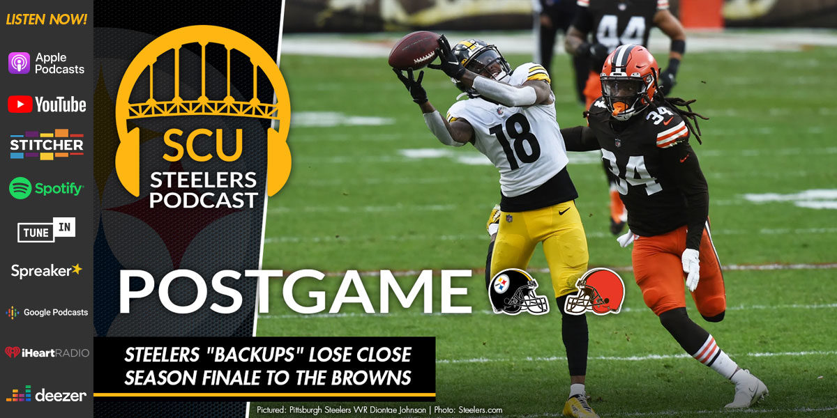 "Steelers ""backups"" lose close season finale to the Browns"